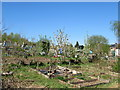 SO9773 : Round Hill allotments Marlbrook by Roy Hughes