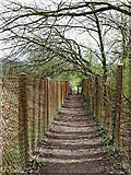 SO9095 : Public footpath south of Colton Hills School, Wolverhampton by Roger  Kidd