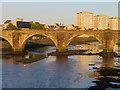 NS3322 : The Auld Bridge over the River Ayr by Steve Daniels