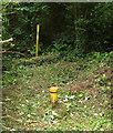 SX9066 : Post and pipe near Nightingale Park by Derek Harper
