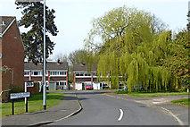 SO9095 : Hinstock Close in Penn, Wolverhampton by Roger  Kidd