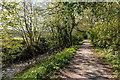 SW9348 : Public footpath alongside the Fal River by Mike Lyne