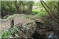 SK5033 : Delapidated bridge over Golden Brook by David Lally