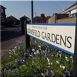 SZ0794 : Ensbury Park: Adamsfield Gardens by Chris Downer