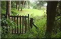 SO6287 : Path to Mill Farm by Derek Harper