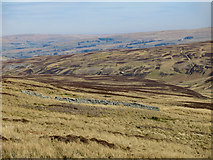 NY6739 : Sheepfold at Smittergill Head by Mike Quinn