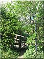 NZ3270 : Public Footpath Sign and Step Stile, Murton Lane, Murton by Geoff Holland