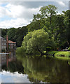 SE3456 : The River Nidd seen from The Marigold Cafe by habiloid