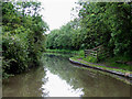 SP4093 : Ashby Canal near Hinckley in Leicestershire by Roger  Kidd