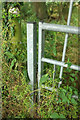 SO6288 : Overgrown gate on the bridleway by Derek Harper