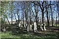 NJ8715 : Graves, St Meddan's kirkyard by Bill Harrison