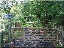 SH6539 : Entrance To Coed Felinrhyd & Llennyrch by Keith Evans
