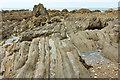SX6643 : Wave-cut platform near Bantham Sand by Derek Harper