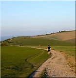 TQ3112 : South Downs Way by Simon Carey
