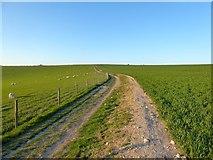 TQ3112 : Sussex Border Path by Simon Carey