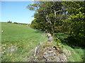 SE1028 : Footpath across Bowl Shaw Clough, Northowram by Humphrey Bolton