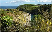 SX9364 : Edge of Walls Hill by Derek Harper