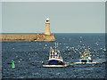 NZ3768 : Trawler Bringing Home the Catch by David Dixon