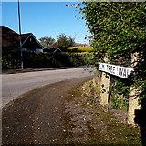 SZ0897 : West Parley: Elm Tree Walk by Chris Downer