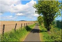 NO3601 : Path to Leven by Bill Kasman