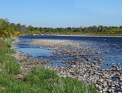 NJ3461 : River Spey by Anne Burgess