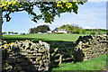 NZ0938 : Wall with gate and field beyond by Trevor Littlewood