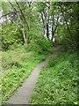 SJ9594 : Duckboards in Gower Hey Wood by Gerald England