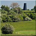 TA0139 : Golfing green and mill, Beverley by Paul Harrop
