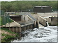 SE3521 : Outflows at Kirkthorpe Hydro by Christine Johnstone