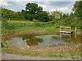 ST6170 : Callington Road dew pond by Neil Owen