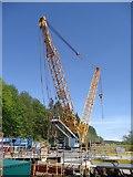 NY4624 : The crane at Pooley Bridge by Michael Earnshaw