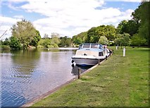 TG2906 : Private cruiser moored by Bramerton Common by Evelyn Simak