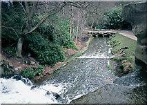 SU9768 : The Cascade, Virginia Water by Stephen McKay