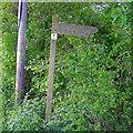 TQ5099 : Signpost for Hawksmere Springs Nature Reserve, Stapleford Tawney by Roger Jones