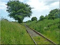 TR2749 : East Kent Railway by Robin Webster