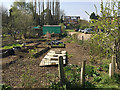 SP2966 : Covid-19 lockdown doesn't extend to allotments, apparently – Potterton's, Warwick by Robin Stott