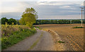 TL5103 : Bridleway to Ongar Park Hall, Stanford Rivers by Roger Jones