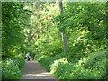 TF0820 : Socially distant dog walkers. by Bob Harvey