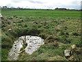 NZ0577 : Prehistoric rock-art on Wallridge Moor by Andrew Curtis
