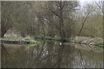 TQ0794 : River Gade joins the Grand Union Canal by N Chadwick