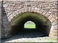 NT0136 : Flood arch on Wolfclyde Bridge by Alan O'Dowd