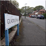 SZ0595 : West Howe: Gladdis Road by Chris Downer