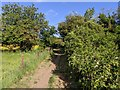 TF0820 : Public footpath by Bob Harvey