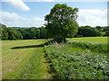 SE2407 : Footpath to Coach Gate Lane, Lower Denby by Humphrey Bolton