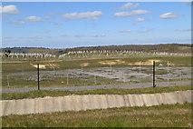 TQ6142 : Settling pond (dry) by N Chadwick