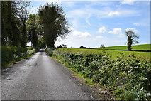 H6056 : Feddan Road, Ballynasaggart / Carran by Kenneth  Allen