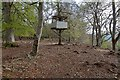 NH6340 : Tree House in Cullaird Wood by valenta