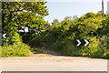 SW9548 : Public Bridleway by Mike Lyne