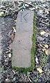 SE2374 : Old Boundary Marker by D Garside