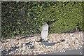 TF0820 : Telephone cable marker by Bob Harvey
